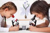 Fotografia Giovani ragazzi in campioni di studio di laboratorio scienza sotto il microscopio-foc