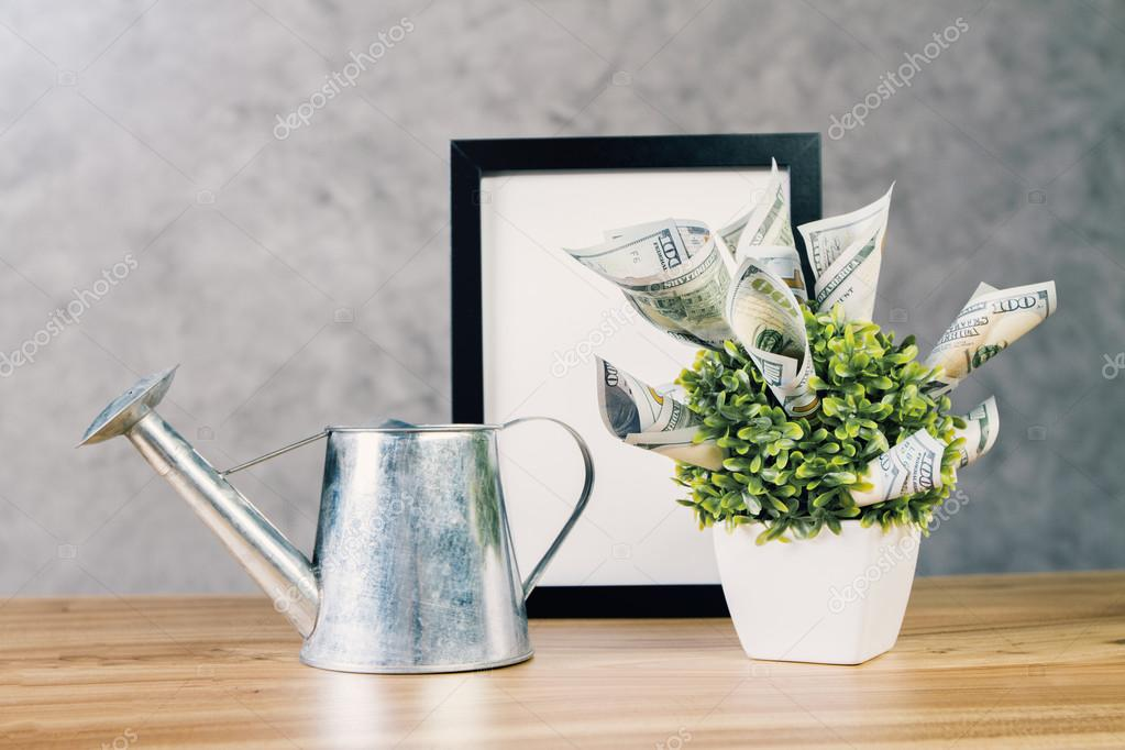 Desktop with watering-can and plant