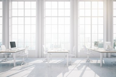 Light coworking office interior