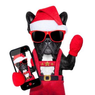 santa selfie dog