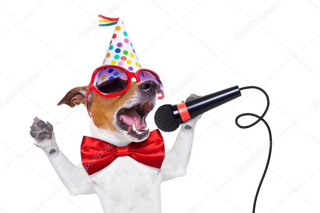 Happy birthday dog Stock Photos Royalty Free Happy birthday dog
