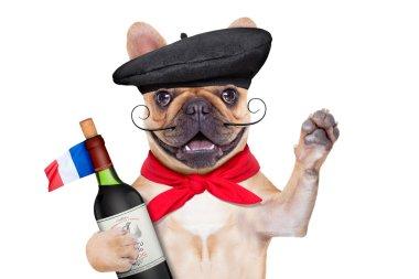 french proud   dog