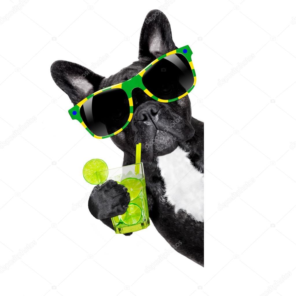 summer cokctail dog