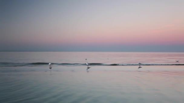 Morgen am Strand der Ostsee