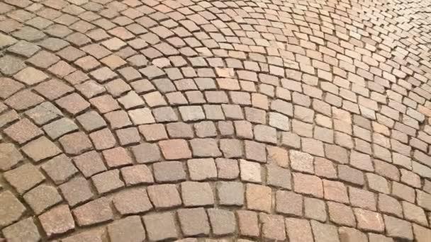Vintage wall Texture Rajasthan India