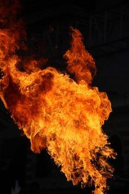 Ateş alevi siyah arkaplanda izole edildi