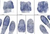 Fotografia una carta dellimpronta digitale