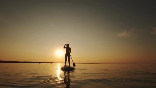 Wide view of Siluet of Woman standing on SUP board and paddling through shining water gold surface. SLOW MOTION view