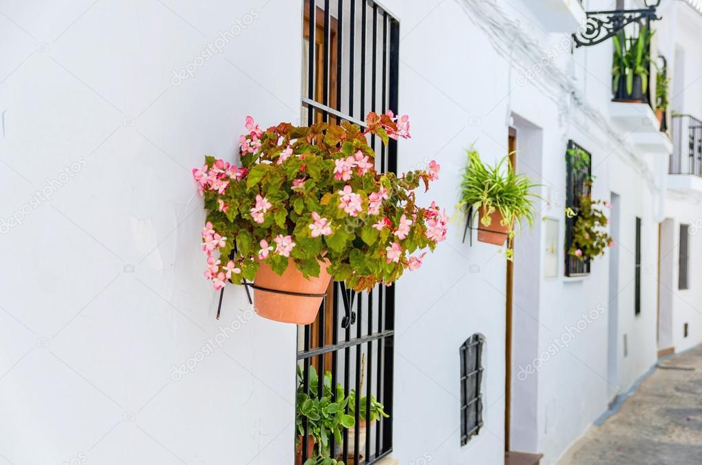Flores En Macetas En La Pared Fotos De Stock C Alfonsodetomas