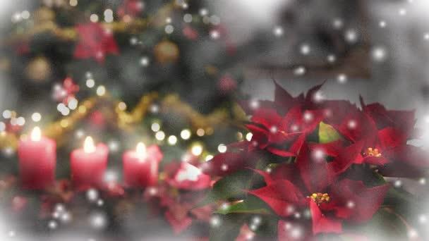 Weihnachten schneit, Weihnachtsstern, Baum geschmücktes Fenster