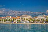 Palm nábřeží města Split