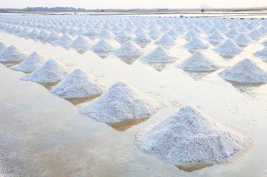 Heap of sea salt in original salt produce farm make from natural