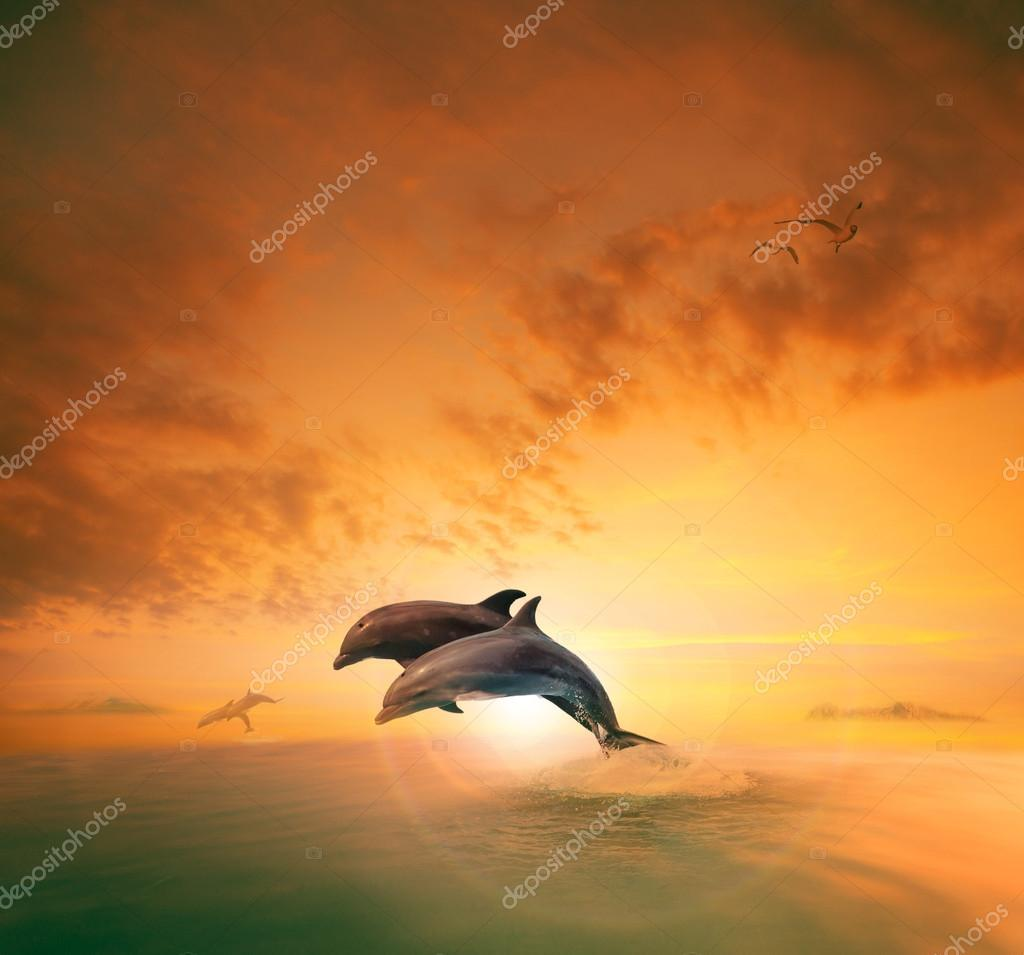 couples of sea dophin jumping through ocean wave floating mid ai