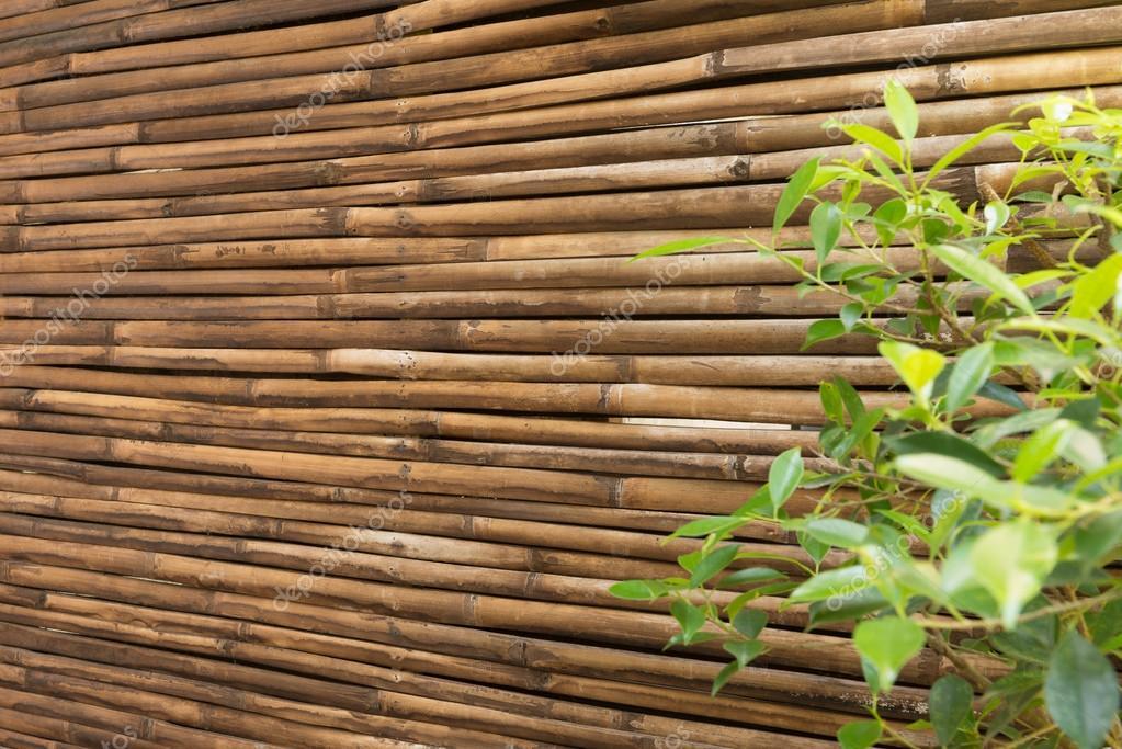 Bambus Holz Zaun Mauer Hintergrund Stockfoto C Wuttichok 87033984
