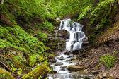 Horský lesní potok s vodopádem