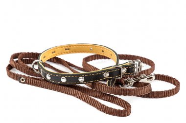Leather collar and leash on a white background.