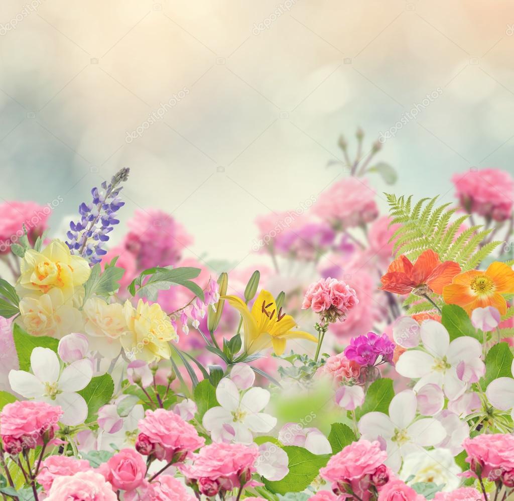 Fondo: Fondos Hermosos De Flores