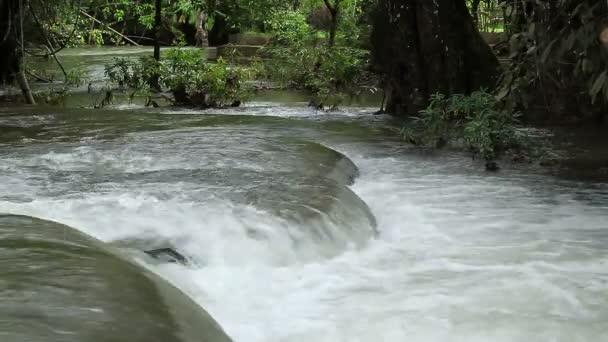 Vodopád a tekoucí vody, v lese