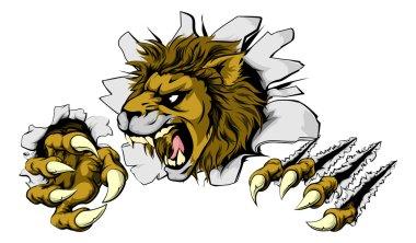 Lion smashing out