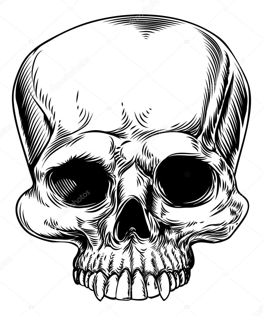 ᐈ Cool Skull Drawing Stock Drawings Royalty Free Scull Vectors Download On Depositphotos