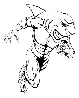 Shark sports mascot running