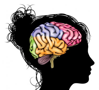 Woman brain concept