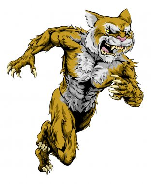 Wildcat sports mascot running