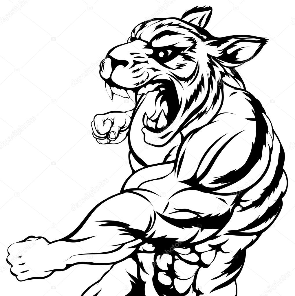Tiger mascot fighting