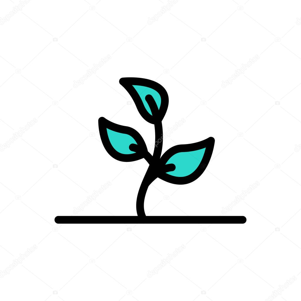 Plant icon for website and Apps design and desktop envelopment  development and Printing icon
