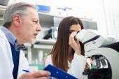 A tudósok orvosi dokumentum megvitatása