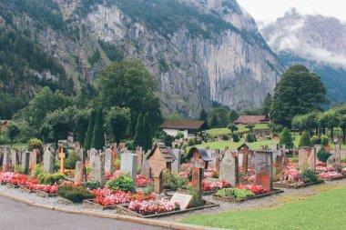 Cemetery in spring garden