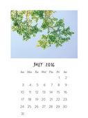 Foto kalendář 2016
