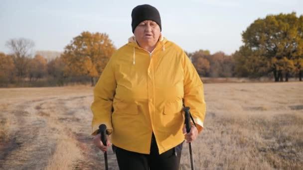 Seniorin beim Nordic Walking im Herbstwald. Nordic-Walking-Rennen auf Herbstpfad. Rentner Gesunder Lebensstil Konzept. Steadicam-Video.