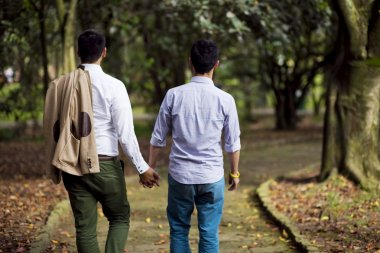 Beautiful gay couple in the park