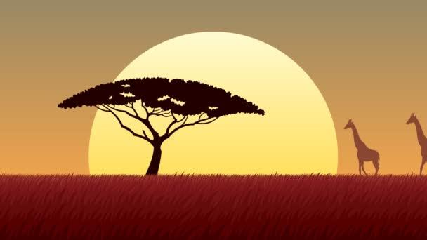 Afrikai táj, naplemente