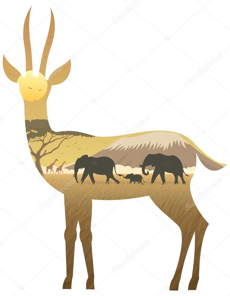 African Gazelle Landscape