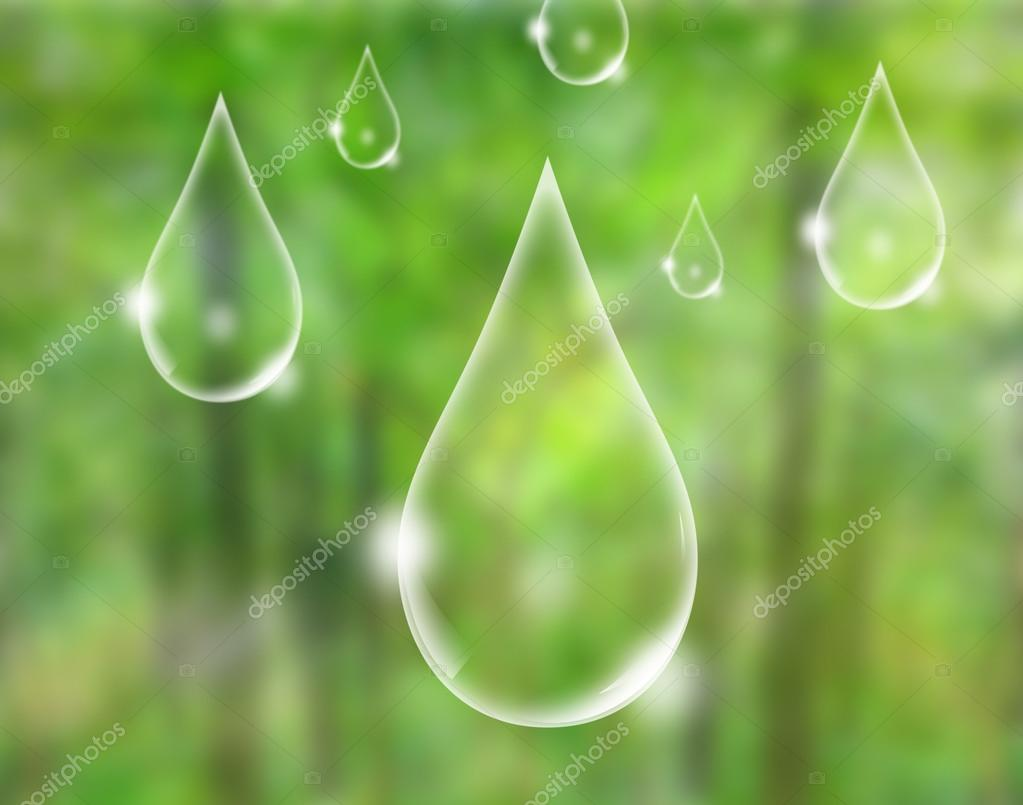 Eco concept : water drop in green forest