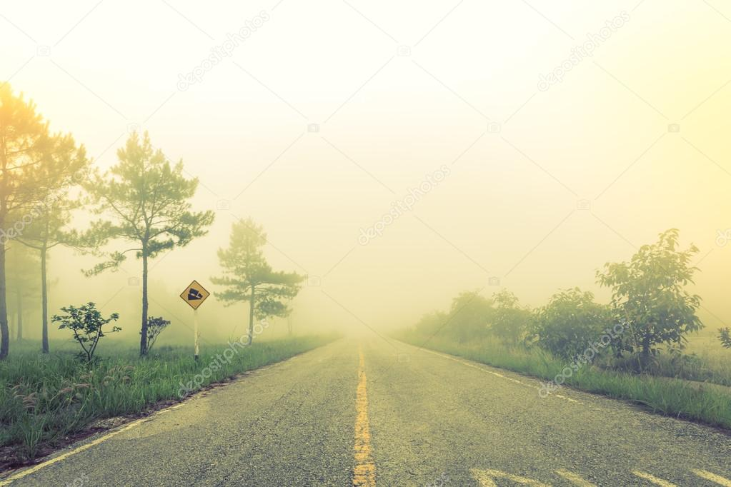 Road in fog with trees ( Filtered image processed vintage effect