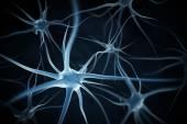 Neuronok absztrakt háttér