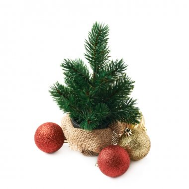 Tiny christmas tree composition isolated