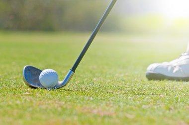Golfer in a golf course