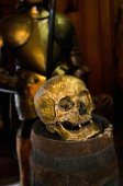 skull and armor close up