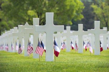 memorial day at American cemetery