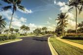 Photo Gated community road and condominiums