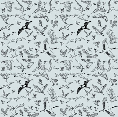 Color birds set seamless pattern