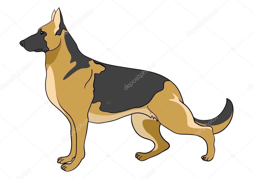 Ilustración De Dibujos Animados De Perro De Pastor