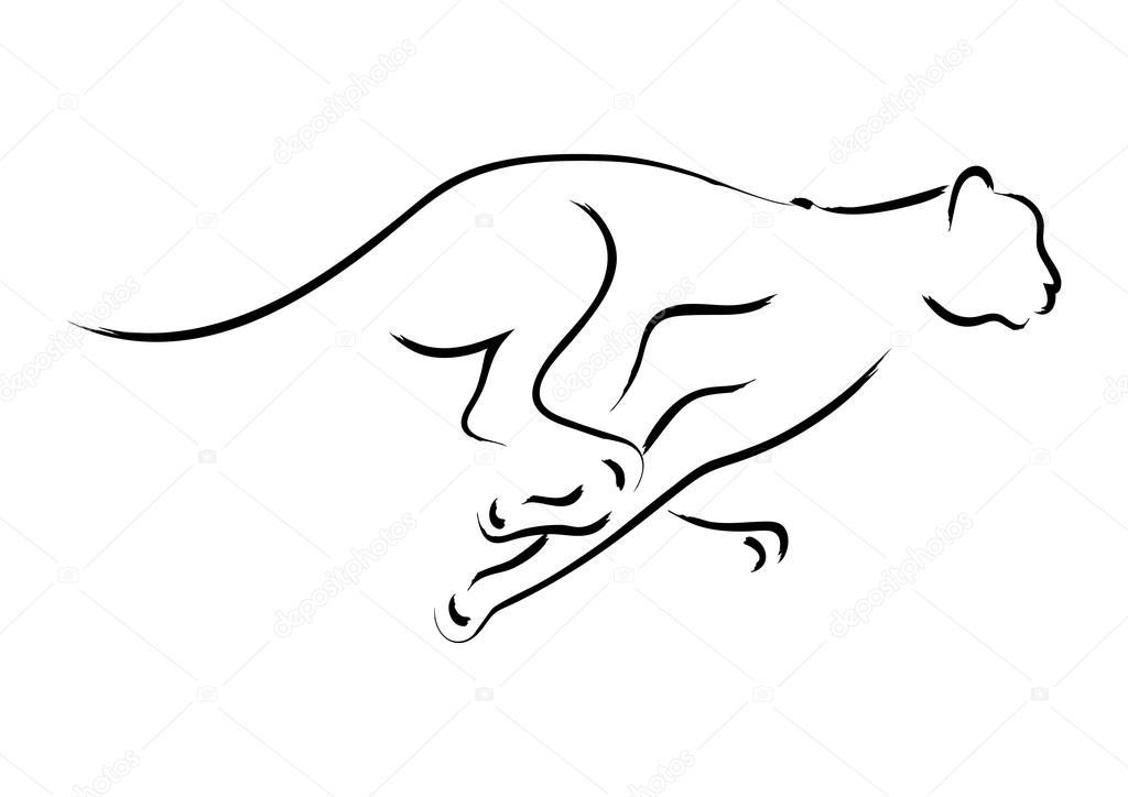 guepardo — Vector de stock © rudall30 #75322903