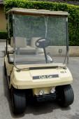 Golf club auto
