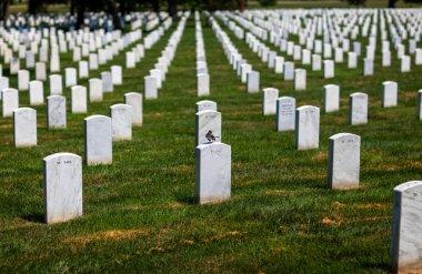 Arlington National Cemetery Virginia VA near Washington DC Unite