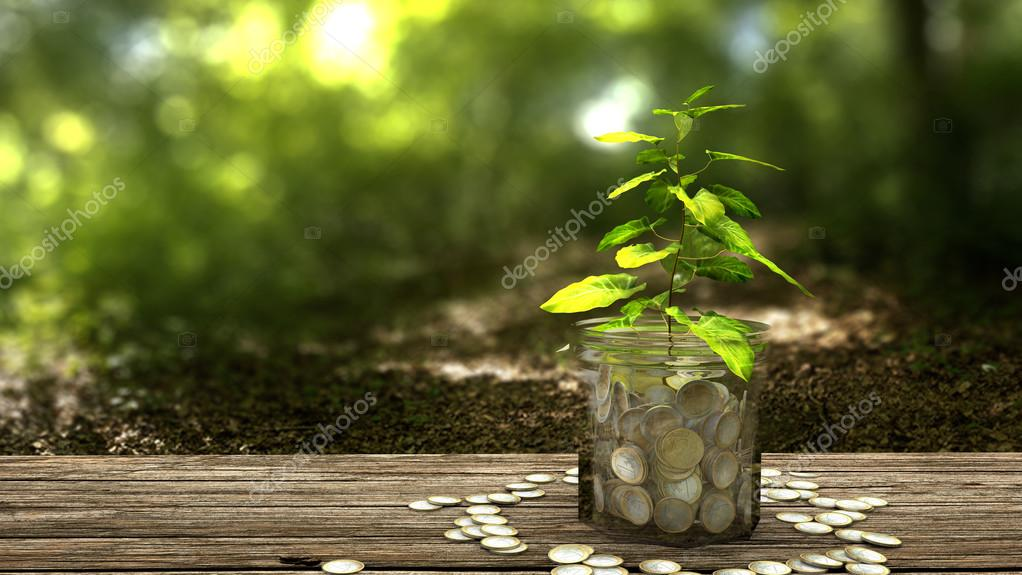 Plant growing from money jar. Concept of financial investment.